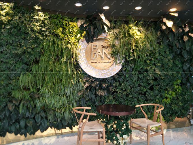 天然绿色植物背景墙